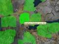 Amethera Outback Land 03.jpg