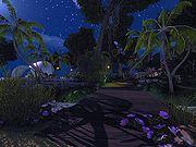 Next Island Guides Arthurs Island Tours Part 3 14.jpg