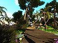 NI Guides Arthurs Island Tours Part 1 12.jpg