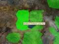 Amethera Outback Land 23.jpg