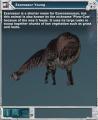 Exarosaur 01.jpg