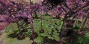 7-zekforestwithpurpletrees.jpg