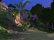 Next Island Guides Arthurs Island Tours Part 3 20.jpg